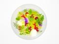 18-09-16_14h47m01s-Mauro-Colagreco-(Mirazur)---Tomaat-en-basilicum-extract-met-saffraanolie